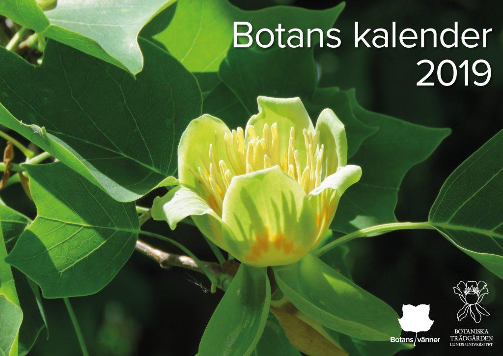 Botans kalender 2019. Foto: Dan Abelin.